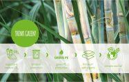 filmolux® soft organic – der neue Standard im Buchschutz ist grün